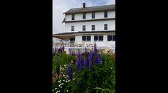 38 best exteriors images cabins chalets coastal rh pinterest com