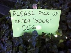 "The ""Blog"" of ""Unnecessary"" Quotation Marks! So funny!"