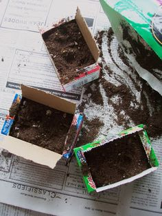 Welcome to the Daisy Flower Garden - Mini Cereal Box Seed Starters, could also use gs cookie boxes.