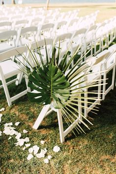 Tropical beach wedding aisle decor from tropical waterfront wedding in san diego, california Palm Wedding, Wedding Isles, Beach Wedding Reception, Hawaii Wedding, Waterfront Wedding, Wedding Ceremony, Beach Weddings, Destination Weddings, Summer Wedding