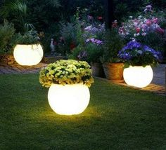 Flower pots painted with Rustoleum's glow in the dark paint.