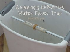 Water mousetrap, I HATE mice! This may not be the most humane solution, unfortunately my backyard has been invaded so I don't care. If it works it will prvent having to use poison that could make the dogs and people sick. :)