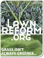 The Lawn Reform Coalition advocates reducing or replacing lawn, using climate-appropriate lawn species, and eco-friendly care for all lawns.
