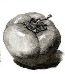 Resultado De Imagen De Dibujo Claroscuro Imagenes De Arte Dibujo Bodegon Dibujos A Lapiz Carboncillo