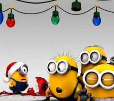 Minions at Christmas Cartoon HD desktop wallpaper, Christmas wallpaper, Merry Christmas wallpaper, Minion wallpaper, Despicable Me wallpaper - Cartoons no. Cute Minions, Minions Despicable Me, My Minion, Funny Minion, Minion Rush, Minions Cartoon, Minion Stuff, Minion Banana, Minion Christmas