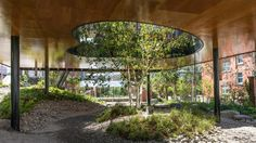 dRMM builds Oldham Maggie's Centre around a courtyard with rippling glass walls