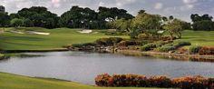 Boca Resort Golf