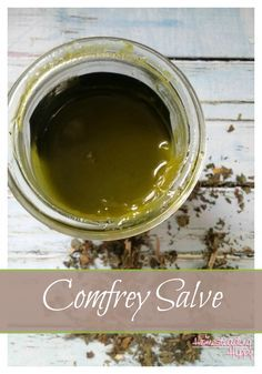 Comfrey is an amazing herb. It has anti-inflammatory, analgesic and decongestant properties that make it a must have for many home herbal apothecaries. I like to have it as a salve to use on bumps and bruises, and to help soothe pain from sprained wrists and ankles. With kids in taekwondo, and a busy homestead,…   [read more]