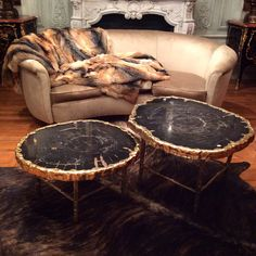 Pair of petrified Wood and bronze coffee table/ Galerie Glustin