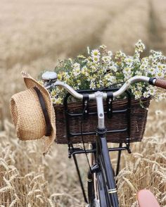Bicycle Basket, Bike Photo, Happy Hippie, Still Life Photos, Picnic Time, Bike Style, Summer Colors, Bike Life, Retro