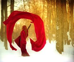 Photography by Patty Maher
