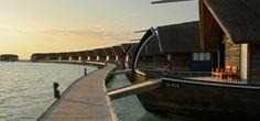 5 Star Hotels Maldives | Cocoa Island by COMO Maldives | Dhoni Suites