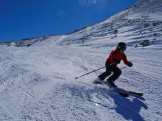 skiing in aludes