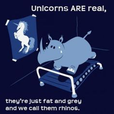 Unicorns Are Real .. soooo cute :)