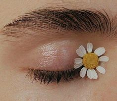 - ̗̀ pinterest : @floweriekanken ̖́-