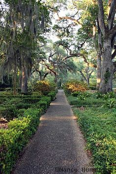 St. Francisville, LA Myrtles Plantation Gardenhloe – a former slave who was allegedly hung on the premises for killing two little girls. (Those murders and even the existence of Chloe are in question.) The ghosts of the two murdered children have been seen playing on the veranda.