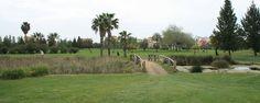 Golf Isla Canela. 18 hoyos integrados en una marisma natural en Ayamonte, Huelva, en plena Costa de la Luz.