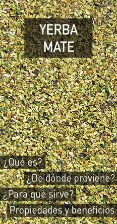 Organic Yerba mate tea has many health benefits. Beer Recipes, Detox Recipes, Natural Medicine, Herbal Medicine, Argentina Culture, Yerba Mate Tea, Salud Natural, Super Natural, Natural Cures