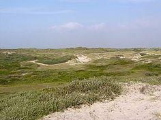 Sint Maartenszee is een buurtschap in de gemeente Schagen, in de provincie Noord-Holland. (Wikipedia)