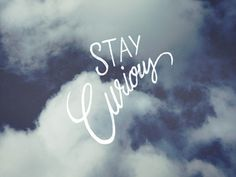 Stay-curious-hand-made-lettering