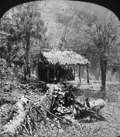 | Florida Memory - Indian camp on the Ocklawaha River - Florida