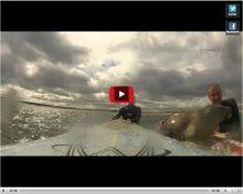 Vidéo: un phoque coquin interrompt des surfeurs - Femmes d'Aujourd'hui