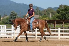 Fix Canter Malfunctions - Horse Illustrated Horseback Riding Tips, Horse Riding Tips, Horse Tips, Horse Barns, My Horse, Horses, Western Horsemanship, Ranch Riding, Horse Exercises