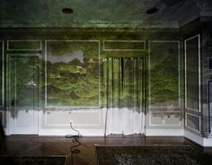 Camera Obscura: View of Central Park Looking  North-Summer, 2008 | Abelardo Morell