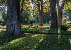 Jardin du Luxembourg * Paris