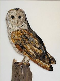 Andrea Poma (@andrea_poma) • Instagram photos and videos Owl Mosaic, Mosaic Birds, Mosaic Crafts, Mosaic Projects, Tyto Alba, Seed Art, Ceramic Tile Art, Owl Illustration, Mosaic Animals