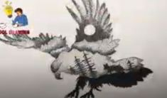This video is a part of cool drawing ideas, drawing birds and drawing tutorial for beginners Drawing Birds, Eagle Drawing, Bird Drawings, Cool Drawings, Pencil Sketch Drawing, Pencil Drawings, Drawing Skills, Drawing Ideas, Drawing Tutorials For Beginners