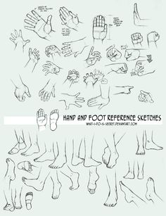 Multireference: Hands and Feet by what-i-do-is-secret on deviantART via PinCG.com