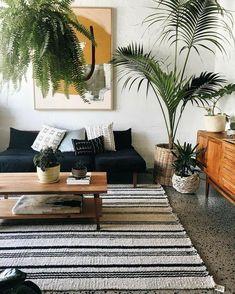 indoor plants in baskets & interesting wall art