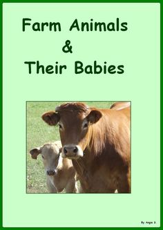 Adapted Book: Farm Animals & Their Babies This is a 11 page book great for young children ages 3-5 as well as for children with autism and special needs.