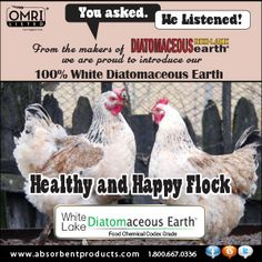 The corner stone of healthy chickens is the holistic trinity - apple cider vinegar, garlic and diatomaceous earth Chicken Feed, Chicken Runs, Chicken Treats, Sac Recyclable, Laying Hens, Broody, Feed Bags, Baby Chicks, Raising Chickens