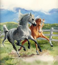 SandyHorse - Equestrian Artist - Horse Paintings and Portraits by Sandy Rabinowitz