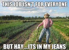 Gardening jokes
