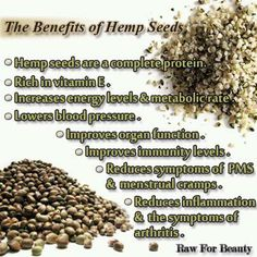 Raw For Beauty: The Benefits of Hemp Seeds Raw For Beauty, Hemp Seeds, Chia Seeds, Healthy Tips, Healthy Eating, Clean Eating, Healthy Foods, Healthy Style, Healthy Herbs