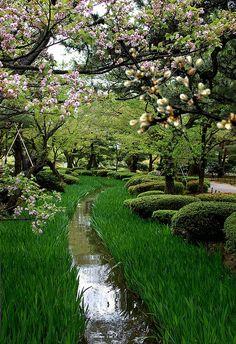 Jardin japonais au printemps. GIF animé.