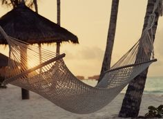 This reminds me of Hawaii. There were hammocks hanging from trees everywhere for people to relax in, it was heaven.