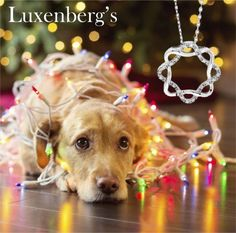 Lives entwined. Shimmering genuine diamonds weaving around this wonderful necklace.  NOW $179  100th Christmas Super Sale.  Luxenberg's...We want to be your Jeweler!  www.luxenbergs.com