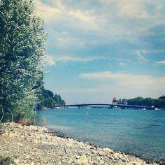 Sommer, Rhein, Fahrradbrücke, schwimmen.