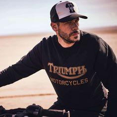 Triumph Radial Sweatshirt - Black / Gold Triumph Motorcycles, Indian Motorcycles, Triumph Motorcycle Clothing, Triumph Logo, Motorcycle Style, Motorcycle Outfit, Motorcycle Fashion, Mv Agusta, Ducati
