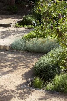 Your home may be your castle, but rather than surround it with a moat, use any of these ten wonderful yard landscaping ideas to add warmth, color, and texture .