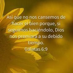Gálatas 6:9 No te canses de hacer el bien. Palabra de Dios.