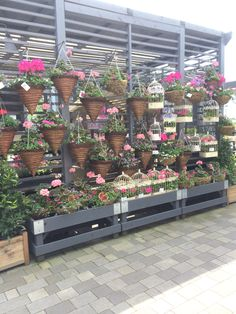 Next - Home  Garden - Home - Decorating Centre - Garden - Lifestyle - Layout - Landscape - Customer Journey - Visual Merchandising - www.clearretailgroup.eu