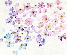 watercolour - from the kellyaffair   love the delicate flowers, the airiness, the harmony of colours - it feels like they flowers are just drifting lightly on the wind.