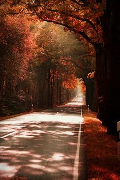 THE ROAD GOING SOMEWHERE IN TIME AND PLACE.....SAID BY FAT