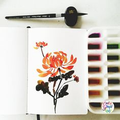 Since my chrysanthemum will end up to the amazing @origamidreamer I did my own for my file but this is a free flow version of it. #calligrafikas #grafikas #dreweuropeo #illustration #watercolor #florals #grafikaflora  Paper: Monologue sketchbook A5 Ink: Noodler's apache sunset & Black sumi ink Brush: Silver Brush Black Velvet round no 10