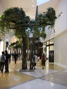 tree.jpg (360×480)